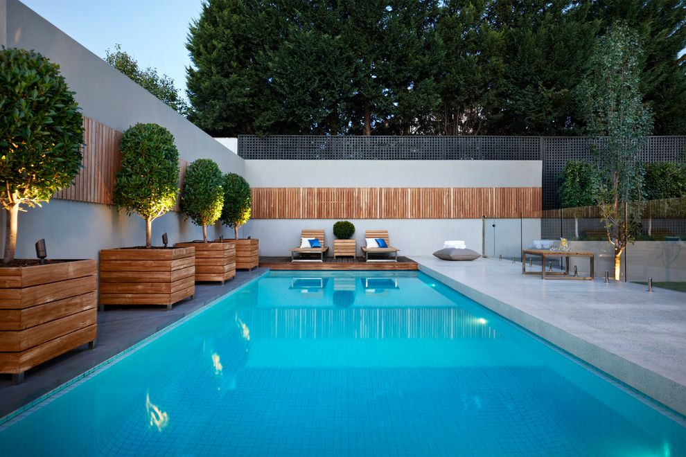 Timber Wolf Size for a Contemporary Pool with a Glass Pool Fence and Caulfield North by Nathan Burkett Design