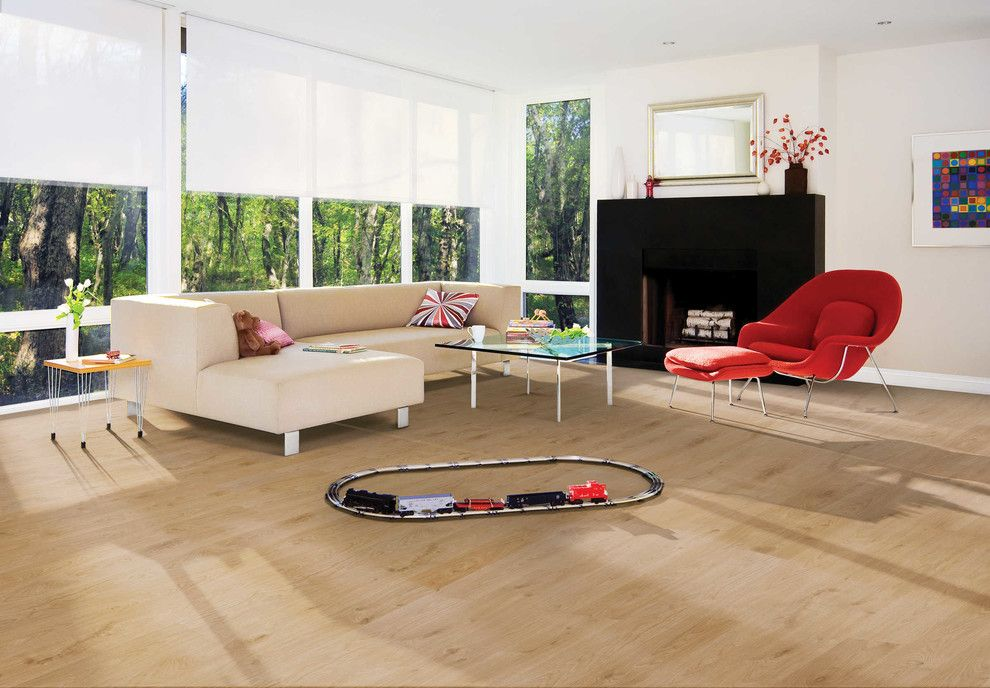 Timber Wolf Size for a Modern Living Room with a Modern and Living Room by Carpet One Floor & Home