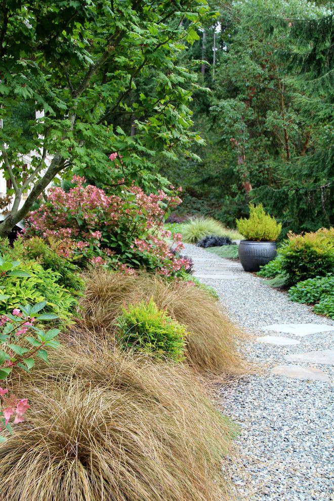 Tony Brown Chevrolet for a Contemporary Landscape with a Bluestone Stepping Stones and Suhr Brown, Bainbridge Island, Wa by Bliss Garden Design