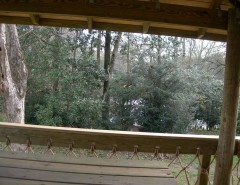 Treehouse Builders for a Traditional Patio with a Green Living and Tree Houses and Play Sets by Backyard Builders