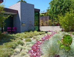 Truckee Meadows Water for a Contemporary Landscape with a Shrubs and Jack Kiesel by Kiesel Design - Landscape Architecture