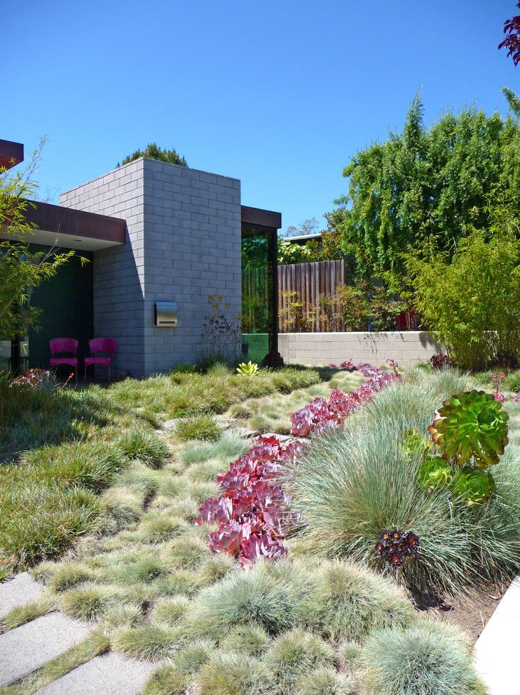 Truckee Meadows Water for a Contemporary Landscape with a Shrubs and Jack Kiesel by Kiesel Design   Landscape Architecture
