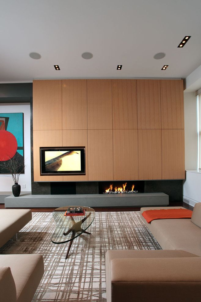 United Artist Laguna for a Contemporary Living Room with a Fireplace and Soho Loft by Jae Chang