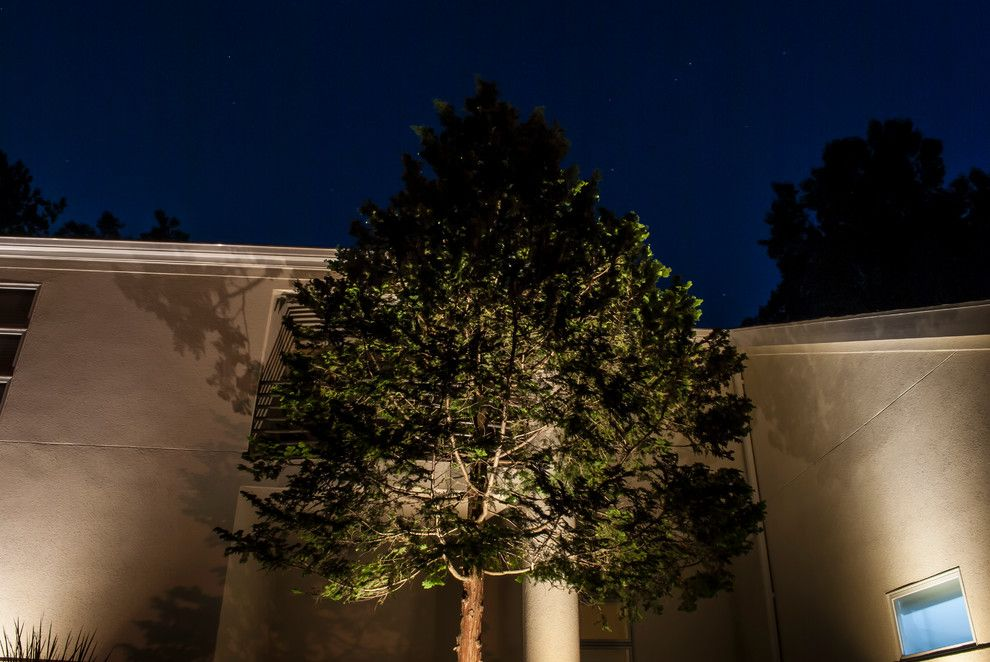 Valley Crest Landscape for a Contemporary Landscape with a Night Lighting and Valleys Crest Project by Lighthouse Outdoor Lighting Baltimore