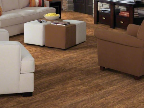 Versalock for a Traditional Living Room with a Shaw Floors and Shaw Avaitor Plank : Earhart Brown by Floor Mania