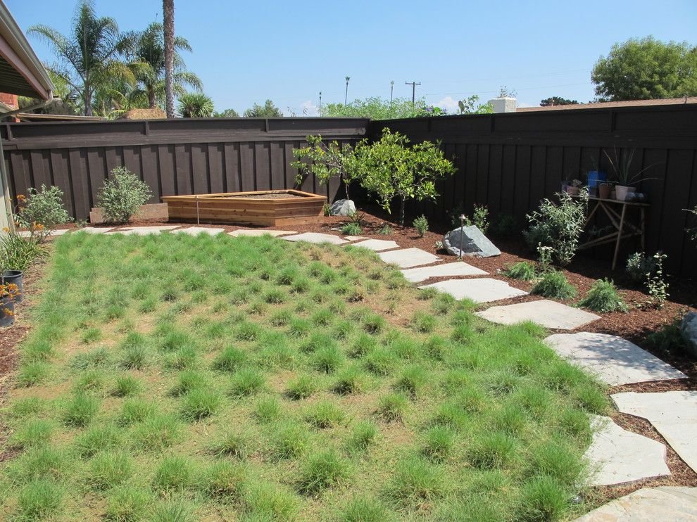 Warm Season Grasses for a Eclectic Landscape with a Buffalo Grass and Ocean Friendly Garden in Clairmont, San Diego by Falling Waters Landscape