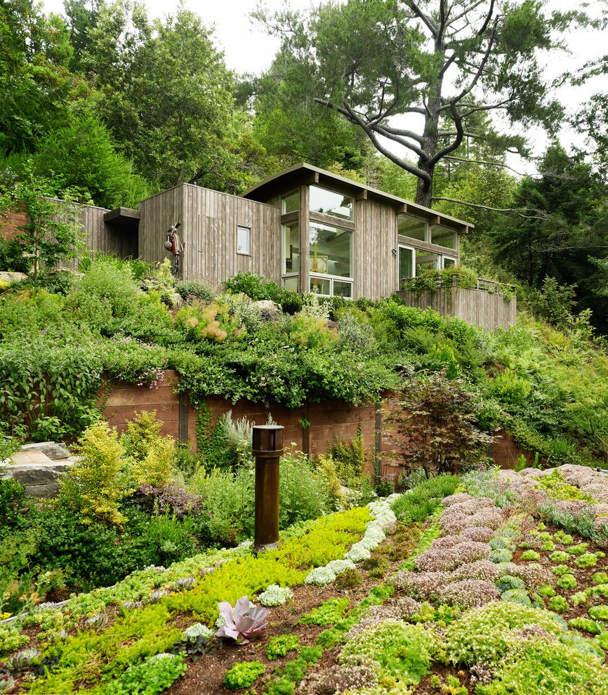 Weather Lakeside Ca for a Contemporary Shed with a Retaining Wall and Mill Valley Cabins by Feldman Architecture, Inc.