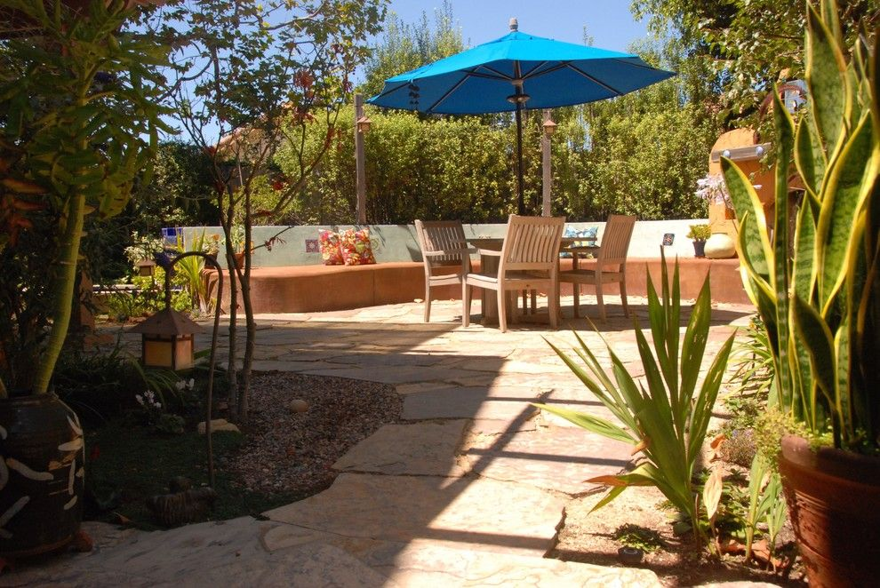 What is Milkweed for a Eclectic Patio with a Eclectic and Casa Wise by Bonnie Mccarthy
