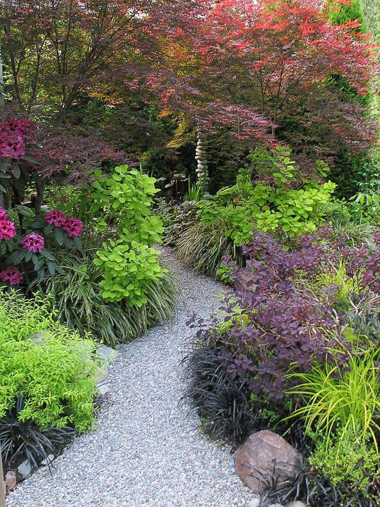 Woodland Hills Utah for a Traditional Landscape with a Acer Palmatum Beni Otake and Great Plant Combinations by Alyson Ross Markley