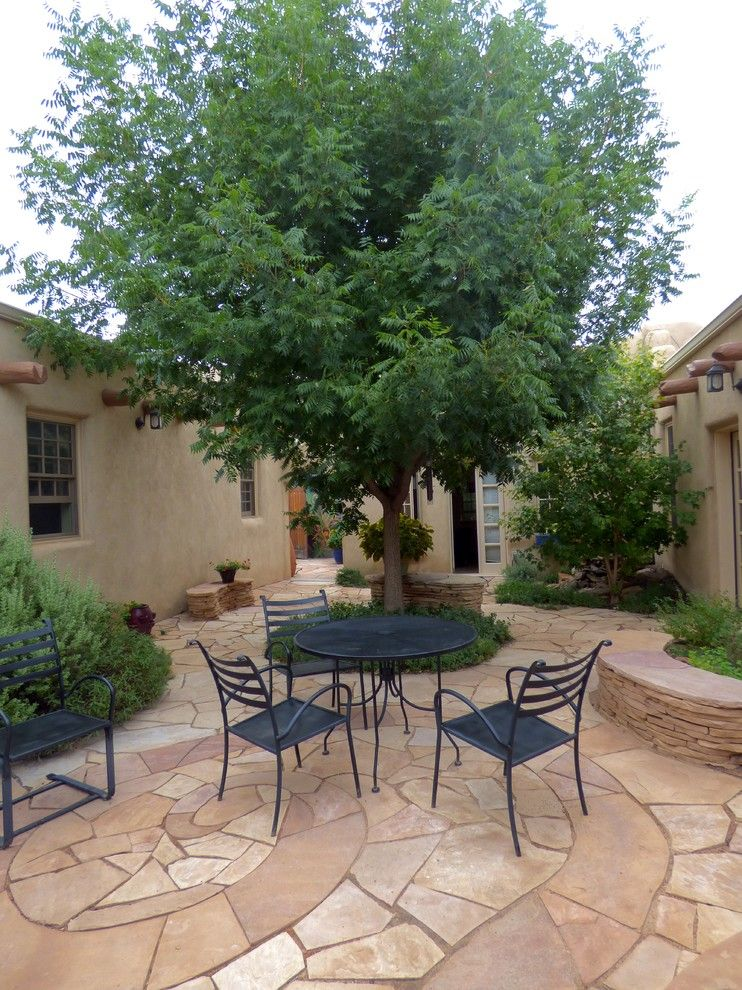 Xeric for a Southwestern Spaces with a Chinese Pistache and Xeric Courtyard by Waterwise Landscapes Incorporated